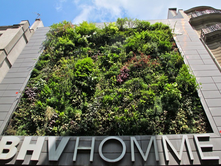 BHV vertical garden Paris