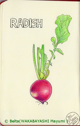 2013_05_30_radish_01_s by blue_belta