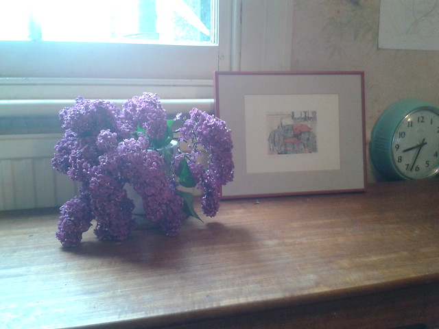 the pretty found lilacs on display