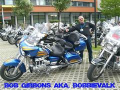 a2006-bob and bob