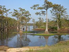 West Monroe & Monroe, Louisiana memories
