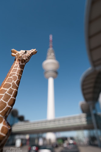 Hamburg Bokeh Sightseeing with the giraffe, Fuji XF 14mm and Fuji X-Pro 1