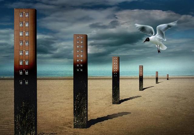 """""""over-built coast"""" - Ben Goossens"""