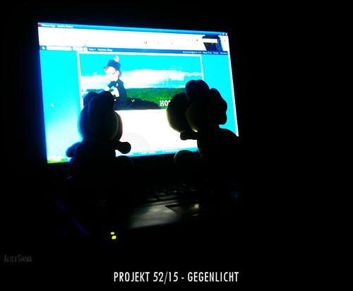 Projekt 52/15 - Gegenlicht