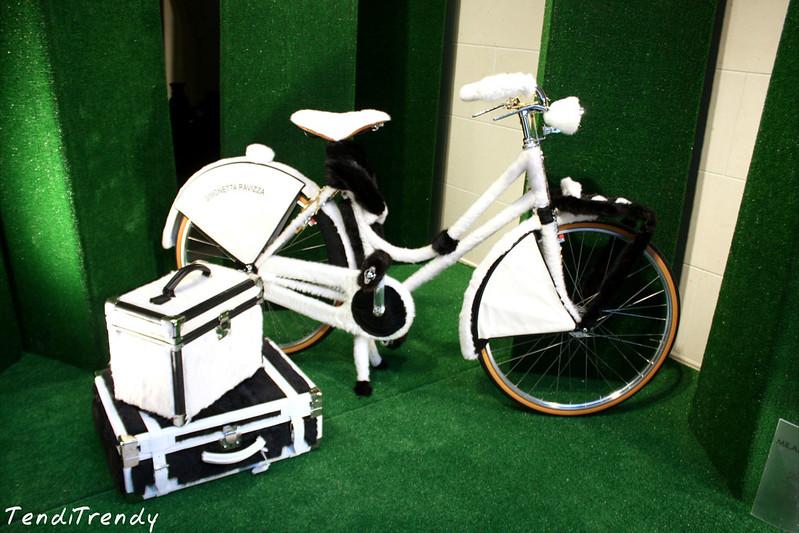 simonetta-ravizza-the-bike
