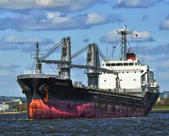 vehicle, tank ship, ship, sea, bulk carrier, reefer ship, cargo ship, watercraft,