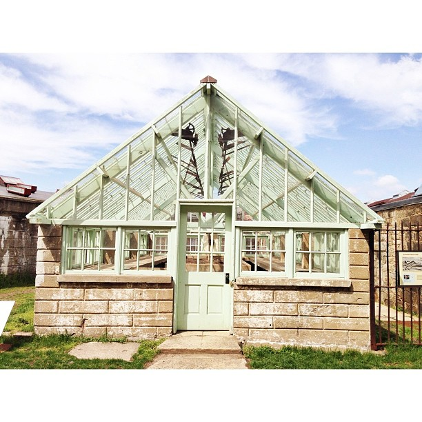 Greenhouse at Eastern State #PicTapGo #latergram