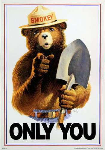 Smokey Bear's lasting message – Only You Can Prevent Wildfires! – resonates with 97 percent of adults.