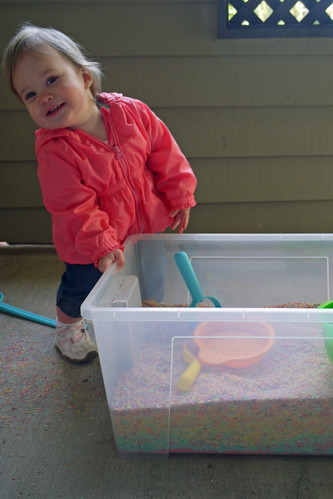 Rice Box Fun