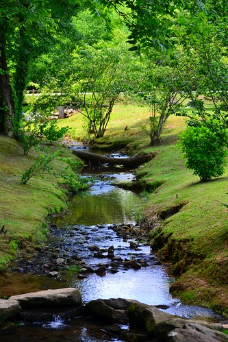 park county trees green water creek ga outdoors community ripple henry clark stockbridge brook splash georiga