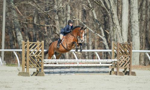 sports animal animals jumping allowme equine equitation sweetbriarcollege cristinathomas
