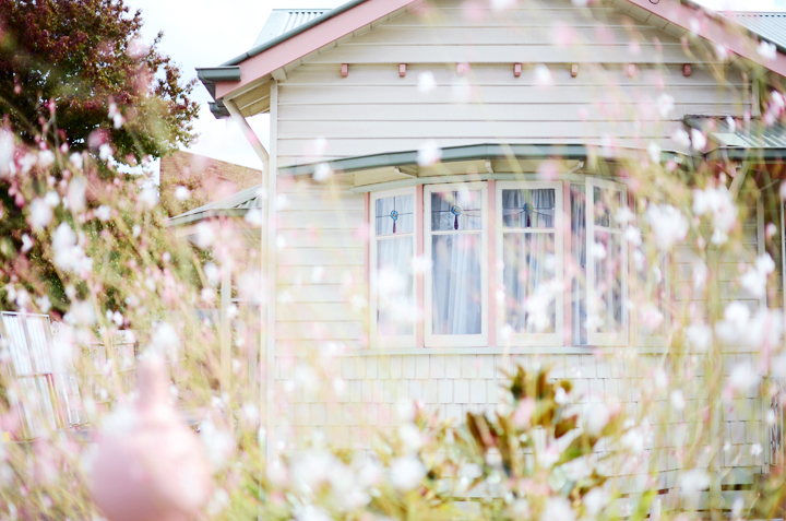 pink floral house b