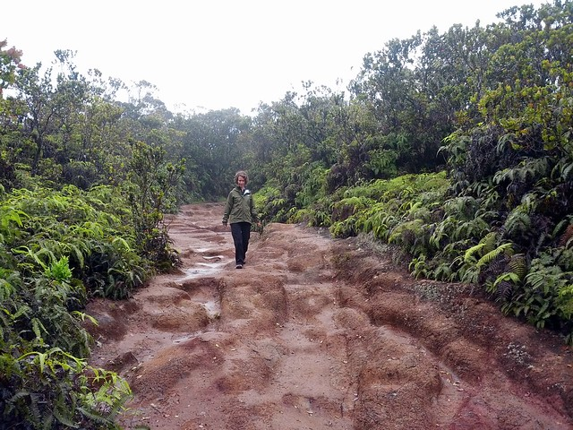 Hike Waimea Canyon Tour