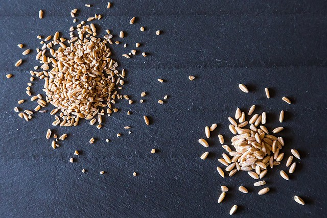 Farro from Food52