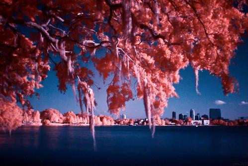 sky mckee color landscape ir orlando ryan infrared colorinfrared colorswap hoyar72 canon30d 720nm channelswap ryanmckee