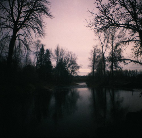 park trees sky film nature water oregon analog mediumformat reflections landscape still lomo xpro lomography crossprocessed kodak toycamera silhouettes peaceful calm haunted diana haunting dreamy analogue expired dianaf vignetting ektachrome pnw tranquil expiredfilm willamettevalley stayton epd200 pacificnorthwesteveningsunsetgolden hourwilderness