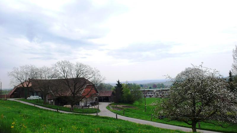 St. Niklaus, Feldbrunnen