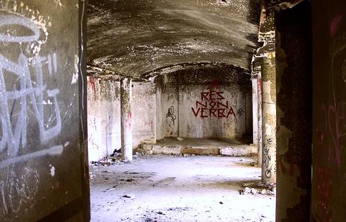 """""""Res non verba"""""""