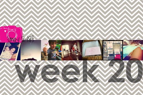week 20 title page
