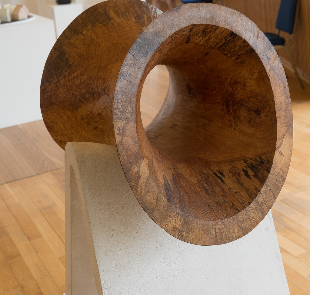 BEECH HOOP BY KEN DREW [SCULPTURE IN CONTEXT 2016]-120721