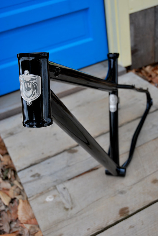 Louis 29er : Back from Paint!