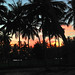 Small photo of Agama Yoga Sunset