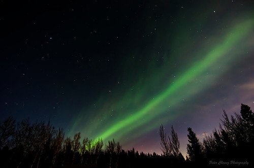 Beautiful Aurora Borealis in Whitehorse, Canada
