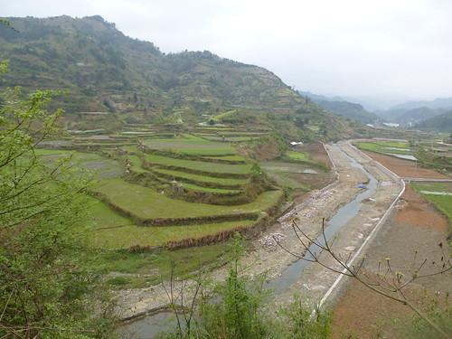 Guizhou13-Kaili-Shiqiao (108)