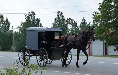 Carruaje amish circulando en Lancaster County