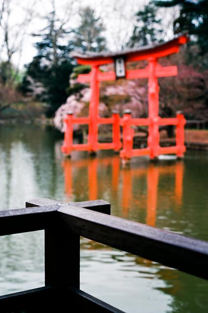 shinto spring