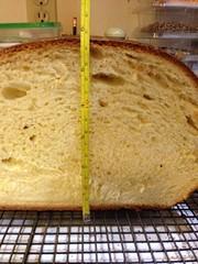beer bread(0.0), dish(0.0), sliced bread(0.0), baking(1.0), bread(1.0), baked goods(1.0), produce(1.0), food(1.0), brioche(1.0), sourdough(1.0),