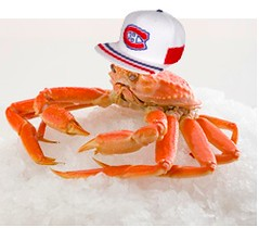 jean-charles QC snow crab