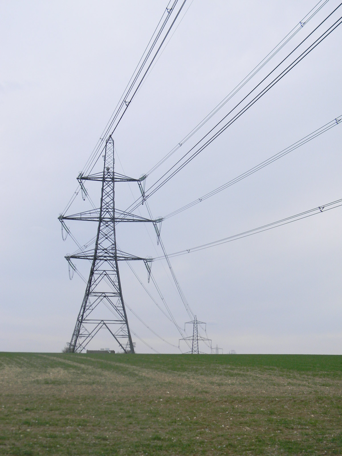 Pylon Something majestic about the way pylons stride across the landscape. I guess the novelty wears off after a while. Wendens Ambo Circular