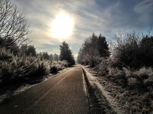 usa washington frost unitedstates olympia chehaliswesterntrail