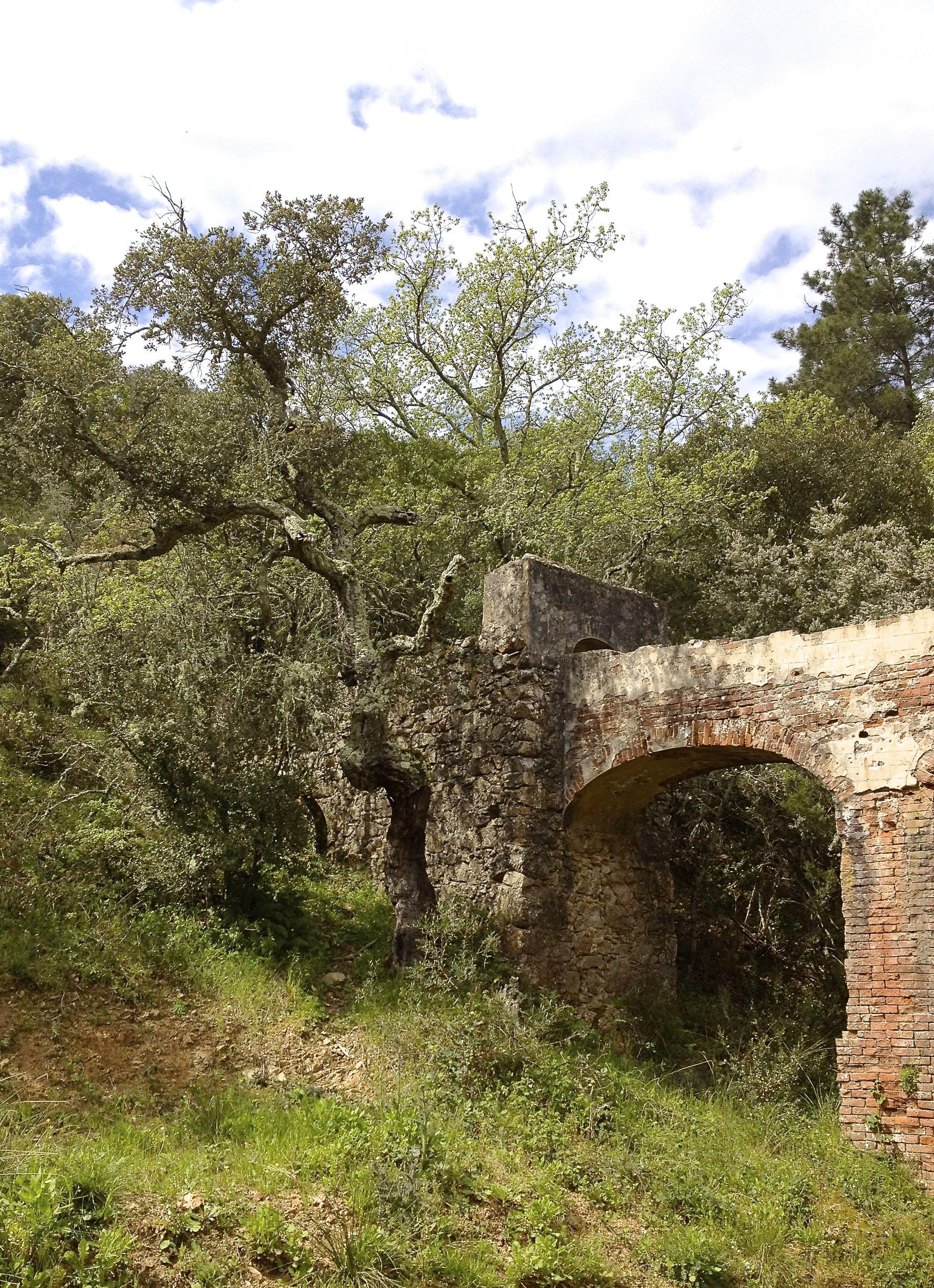 Dimanche 21 avril. Aux abords des ruines d'un moulin à eau.