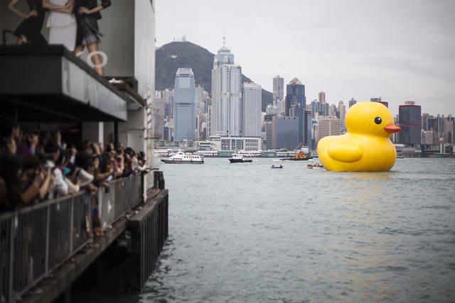 Rubber Duck Project Hong Kong