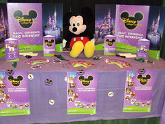 2013-disney-college-program-recruiting-day-booth