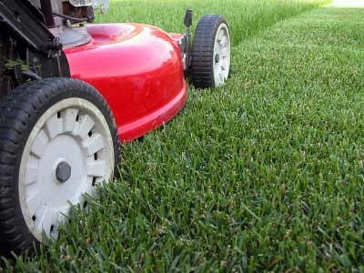 how-to-mow-your-lawn-1