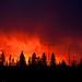 Molten Fire: Sunset in Edmonton