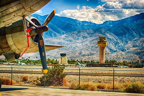 We Went To The Palm Springs Plane Zoo!
