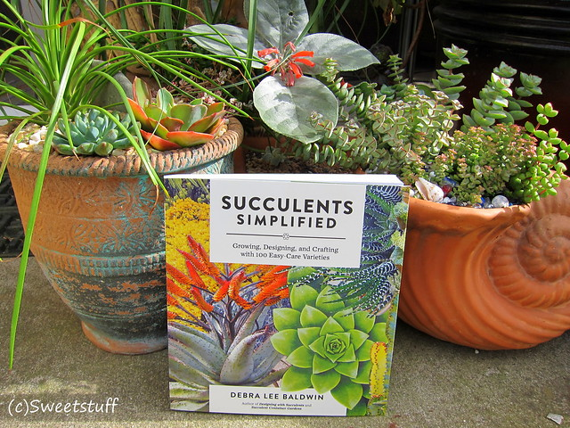 Succulents Simplified, Your New Go To Book