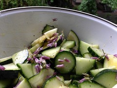 A cucumber, zucchini, mint and purple chive flower salad