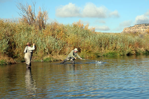 Fly fishing on the san juan river flickr photo sharing for San juan fly fishing