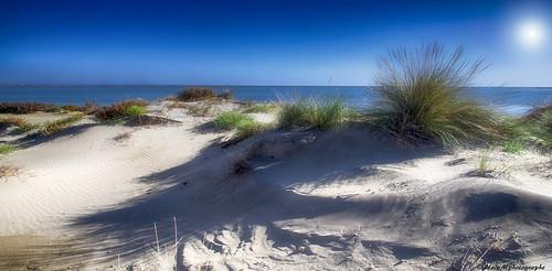 Dunes et étangs......