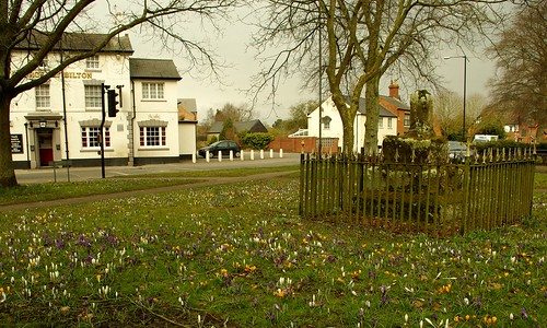 20130330-01_Butter Cross The George Pub + Crocuses - Bilton Green - Rugby by gary.hadden