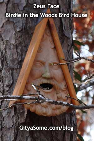 Zeus Face Birdie in the Woods Bird House