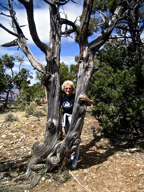 GrandCanyon-Apr2006 - 05