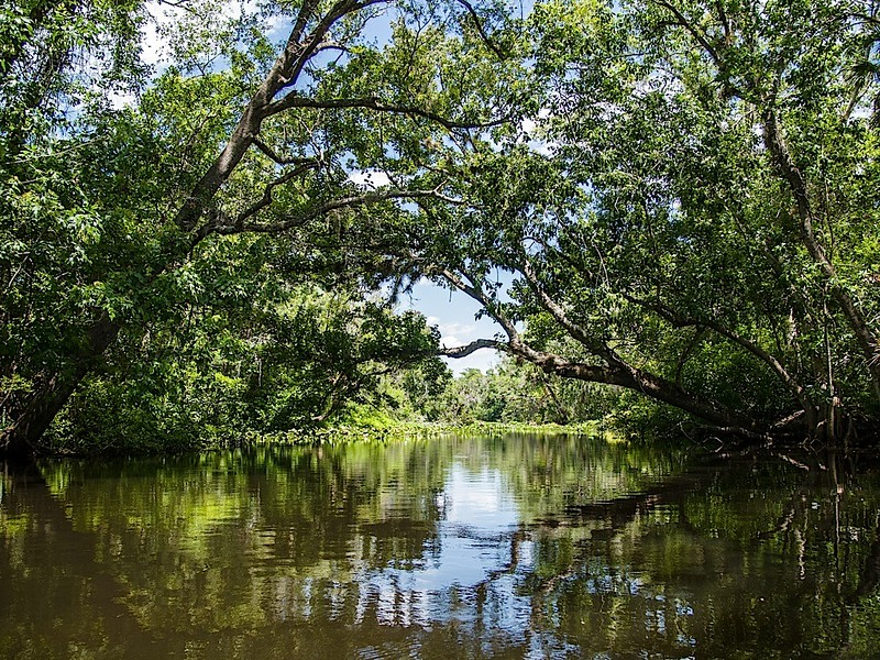 Canoe - Wekiva Falls KOA