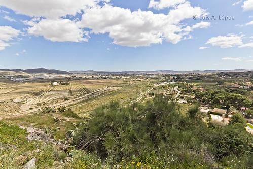 Novelda, Alicante