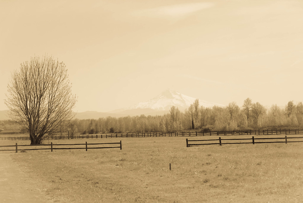 Mt. Hood from Fort Vancouver